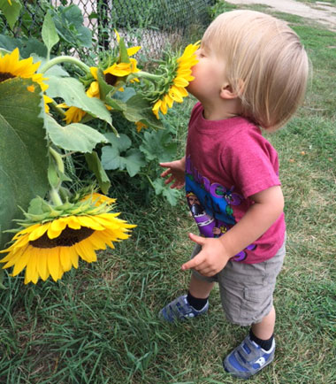 kids smelling flower