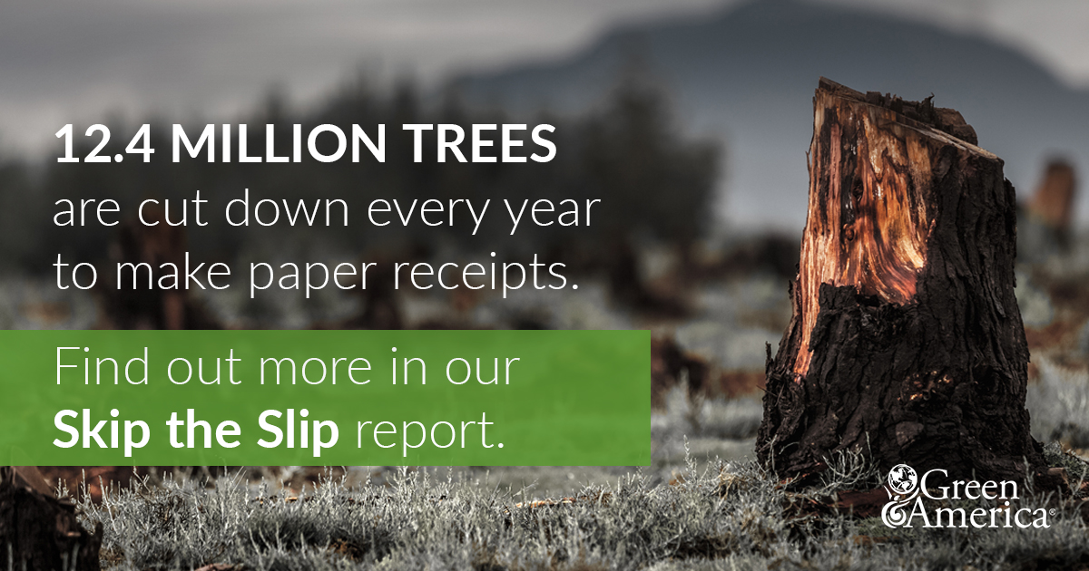 Paper receipts use 12 million trees a year