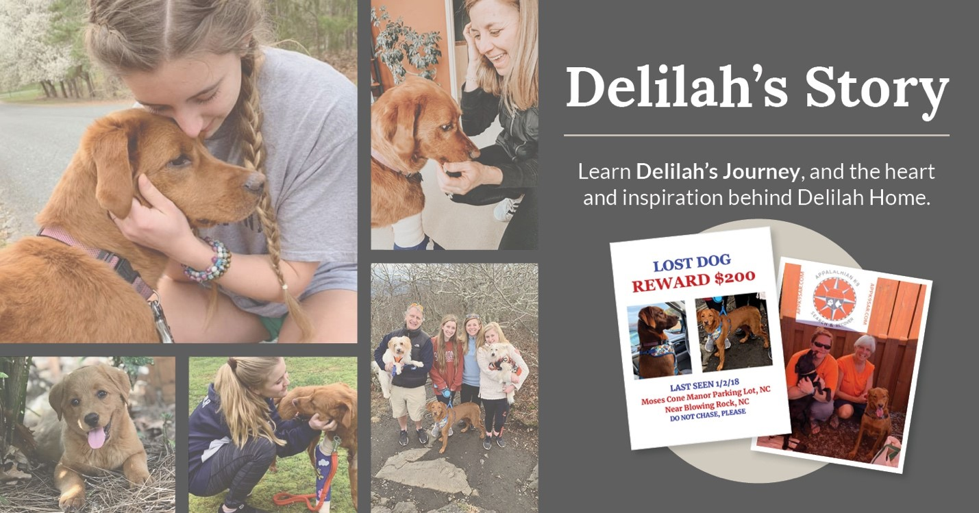 "girl holding a rust colored puppy. Words say ""Delilah's Story"""