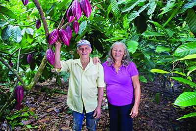 A couple stand next to a cocoa pod tree with large purple cocoa pods.