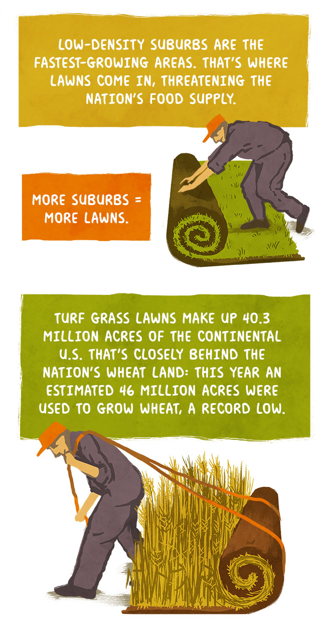 More suburbs = more lawns