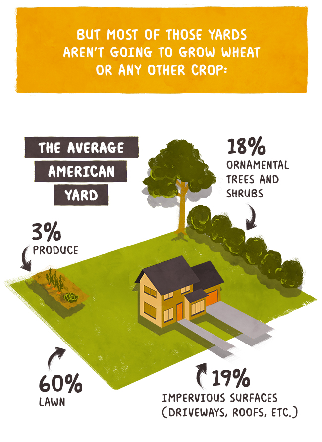 Only 4% of the average American yard goes to growing produce.