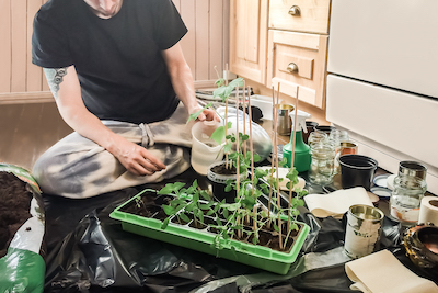 man sitting on floor with repurposed garden supplies for planting seeds and climate victory garden