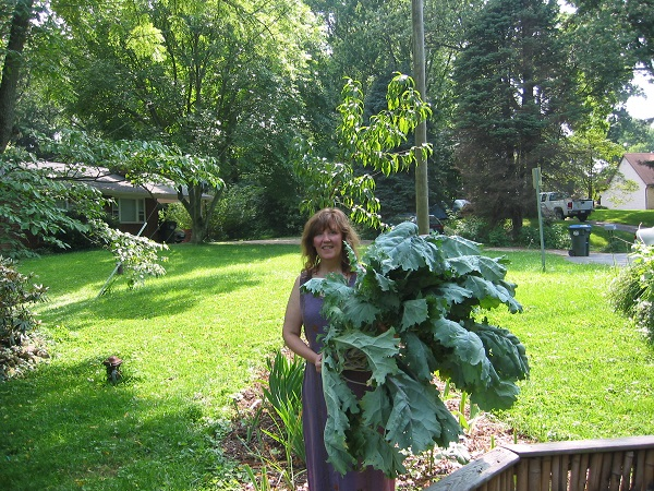 Debby Ward stands by her largest kale plant
