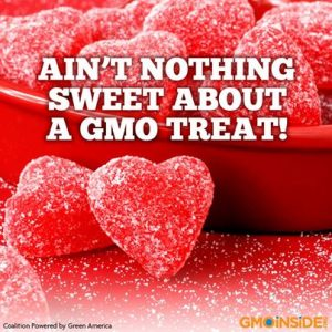 nothing-sweet-about-a-gmo-treat-300x300.jpg