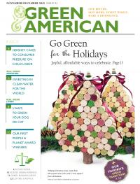 green holidays cover