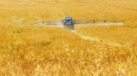 tractor spraying chemicals in yellow field