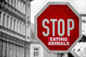 """Stop eating animals"" on a stop sign"