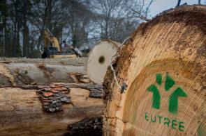 Salvaged logs sent to Eutree lumberyard from local tree service