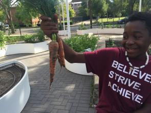 young man holds carrots in school climate victory garden
