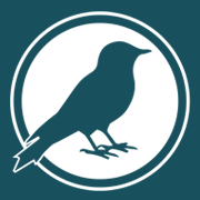 Smart Bird Clothing Co. logo