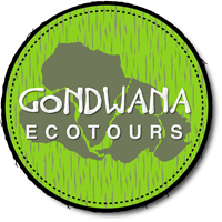 Gondwana Ecotours offers sustainable trips to select destinations around the world.