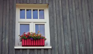 outdoor window with flowers