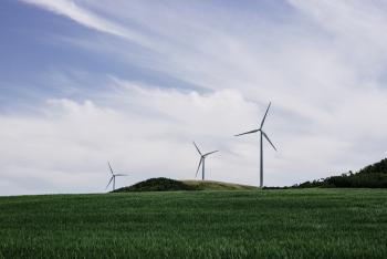 windmills in a field