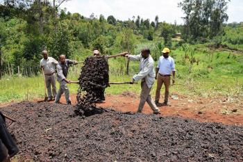 Ethiopian farmers dumping compost on field.